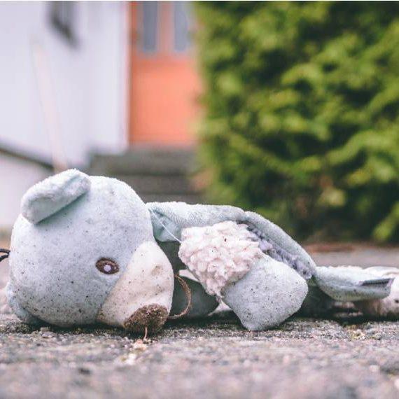 teddybeer straat_570